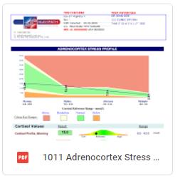 Adrenocortex Stress Male Basic Sample Report