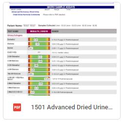Advanced Dried Urine Hormone Report
